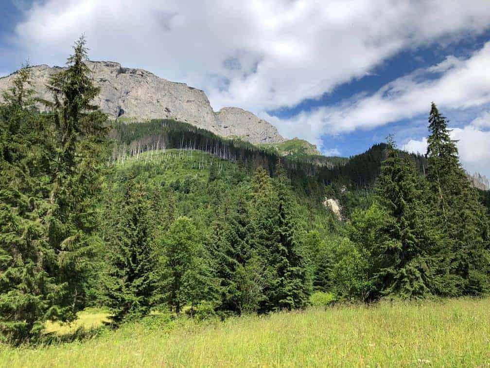 Szczyt Murania Dolina Jaworowa Tatry