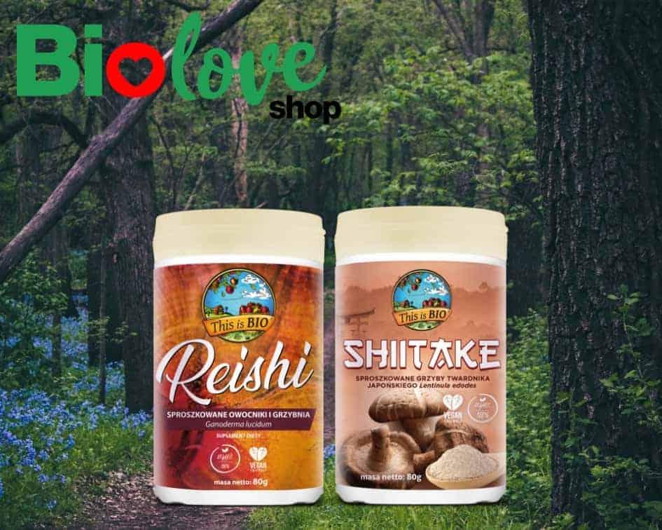 Reishi i Shiitake
